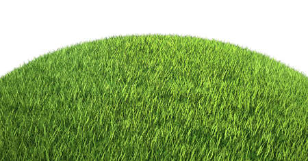 Green grass on hill isolated over white. Large resolution Stock Photo - 16450538