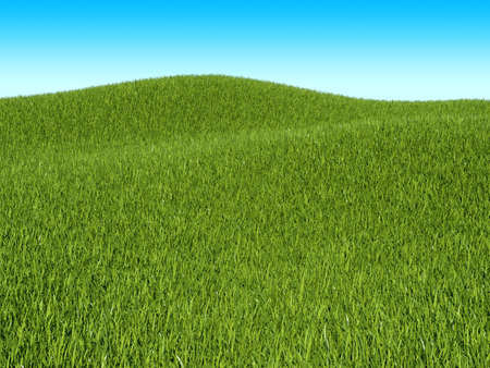 Summer landscape: green grass meadow and blue sky Stock Photo - 16450621