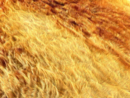 Fell: brown and yellow fox fur pattern or background. Useful for fashion Stock Photo - 17574642