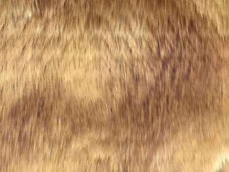 pelage: Fell: brown fox fur pattern or background. Useful for fashion
