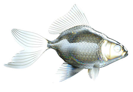 tail fin: Side view of glass fish isolated over white Stock Photo