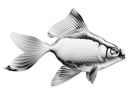 pectoral: Silver fish with fins and scales isolated on white Stock Photo