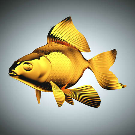 pectoral: Goldfish with beautiful fins and scales over grey Stock Photo