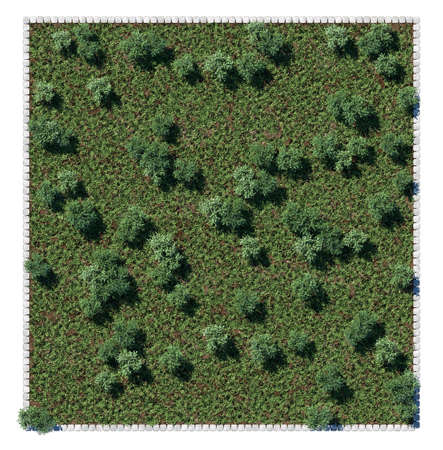 architrave: Park trees and glade view from above. Square composition isolated