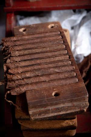 Cigar rolling or making by torcedor in cuba, Pinar del province Archivio Fotografico