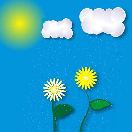 morning sun, yellow flowers, blue cloud, summer rain