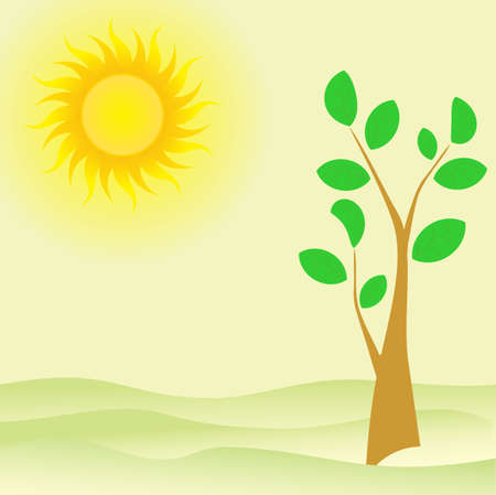 tree with green leaves vector summer sun