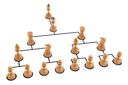 Organization chart photo