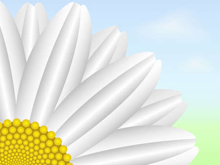 Daisy on blurry sky background Stock Illustratie