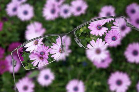 Eyeglasses helping to see flowers in focus