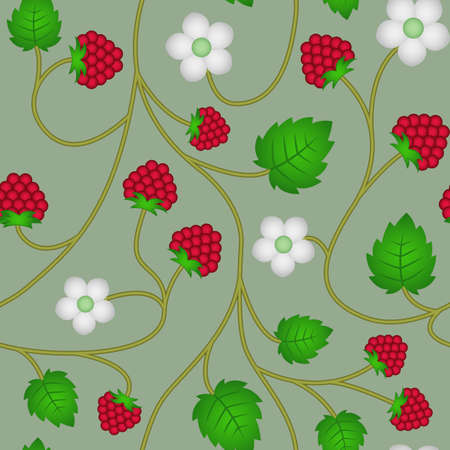 Raspberries seamless floral pattern background with raspberries for web
