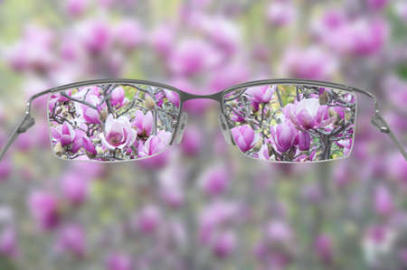 Eyeglasses helping to see a blossoming tree in focus