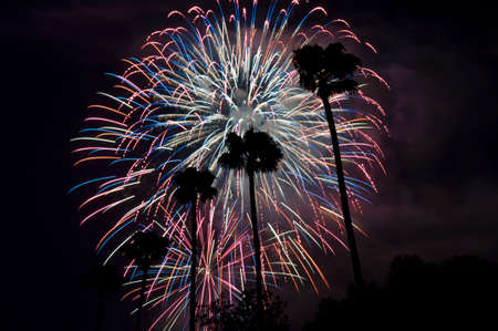4th of July Firework in California