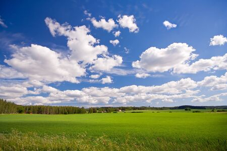 Grünes Feld und blauer Himmel in der Landschaft, Finnland Standard-Bild - 13070310