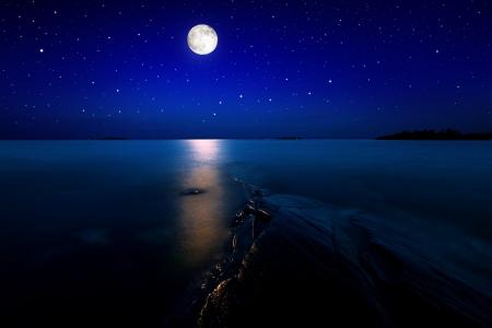luz de luna: Paisaje en luz de la luna con las estrellas