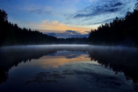 Misty lake in summer night Фото со стока