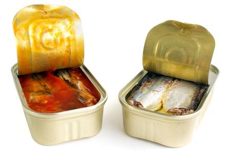 Sardinen in Öl und in tomateo Sauce Standard-Bild - 16914810