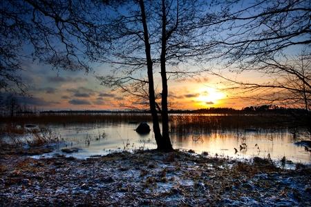 Winter beach mit Niederlassungen nach Sonnenuntergang Standard-Bild - 16979978