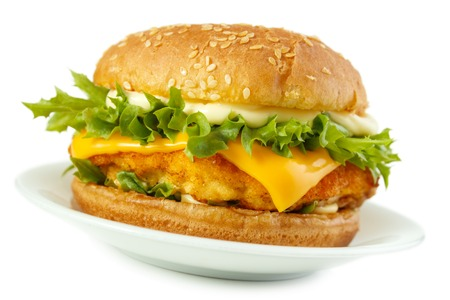 Fish burger , isolated on white with shadow photo