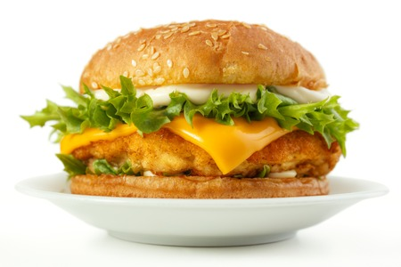 white  fish: Fish burger with cheese and mayonnaise on dish