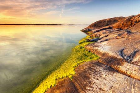 alga: Beach rock with green alga and still sea water Stock Photo