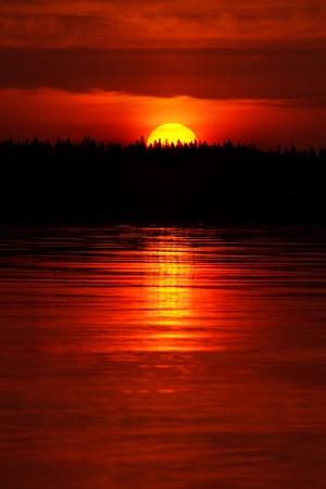 sol naciente: El aumento de la naturaleza de fondo de sol, vertical