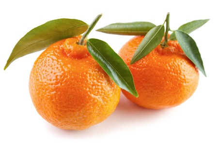 Two ripe clementines with green leaves , white background Standard-Bild - 107305611