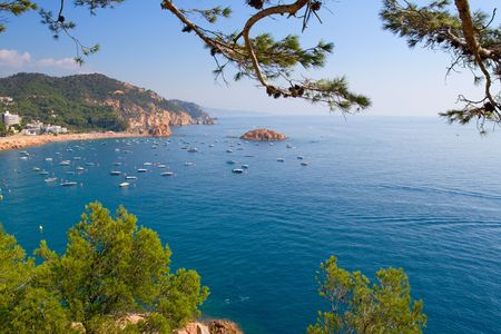 costa brava: Paysage de la Costa Brava pr�s de Tossa. Catalogne, Espagne
