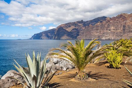 cliff edges: View of Los Gigantes cliffs. Tenerife, Canary Islands, Spain  Stock Photo