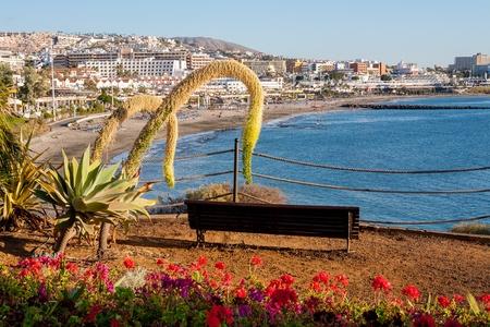 adeje: Playa Fanabe  Costa Adeje  Tenerife  Canary Islands  Spain