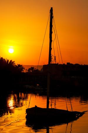 Silhouette of an old felucca  boat  by sundown  El Gouna  Egypt photo