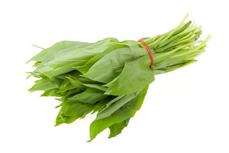 Bunch of ramsons leaves on a white background