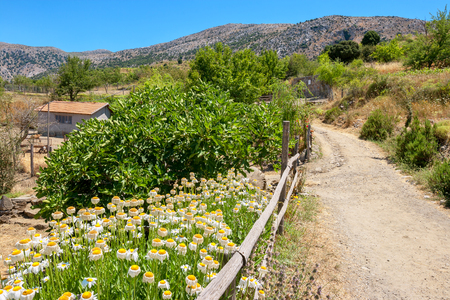 Road to the farm in countryside. Lasithi Plateau, Crete island, Greece