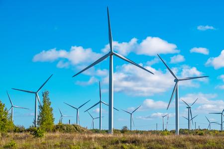 turbina: Granja de turbinas de viento cerca de Paldiski. Península de Pakri, Mar Báltico, Estonia, Europa Foto de archivo