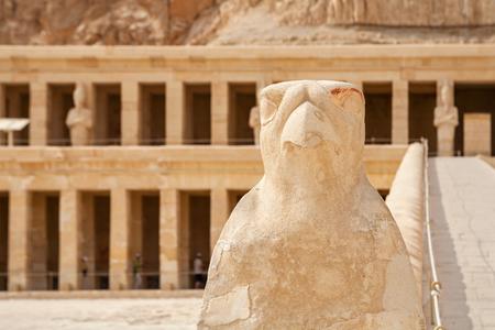 horus: Stone Horus statue at Mortuary Temple of Queen Hatshepsut. Deir el Bahri, Luxor, Egypt