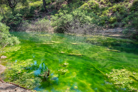 Green lake in Seven Springs (Epta Piges) area. Rhodes island, Dodecanese, Greece