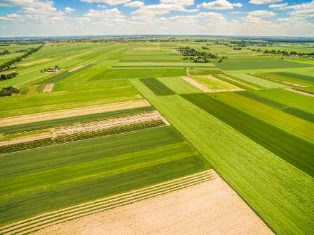 Countryside and field seen from the bird's eye view. Crop fields extending to the horizon. Standard-Bild