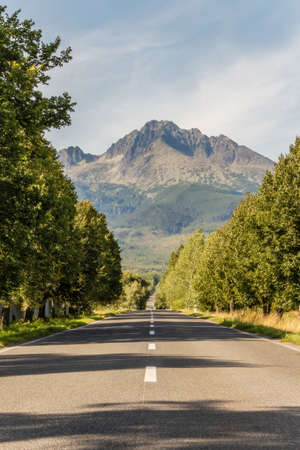 Road leading to the mountains. Traveling along a path among trees, leading into high mountains. Landscape of the Slovak Tatra Mountains.