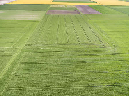 Agricultural areas from a bird's eye view. Cultivated fields with traces of agricultural machines. Standard-Bild