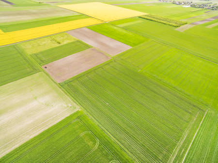 Spring, agricultural landscape of bird's eye view. Abstract background with colorful fields.