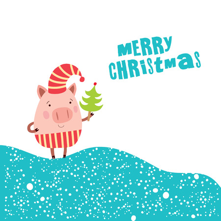 Funny Christmas pigs, Merry Christmas Greeting card and New Year 2019. Pig character.