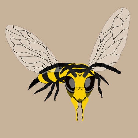 Vector illustration. Combat wasp ready to strike. Vector