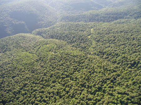 foliar: Photos from the birds-eye view. Road in a mountain forest. Stock Photo
