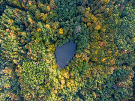 Aerial view. Wild forest lake in Russia, Caucasus.