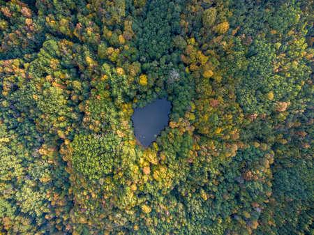 Aerial view. Wild forest pond. Dark Lake, Krasnodar region, Russia.
