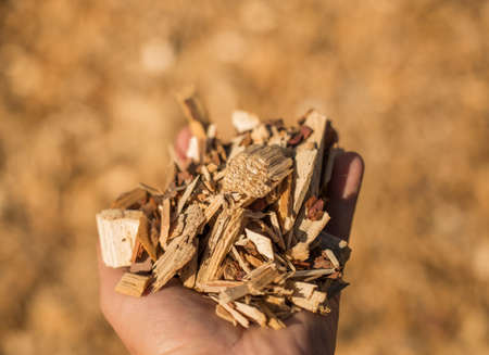 particulate: A handful of wood chips. Selective focus.