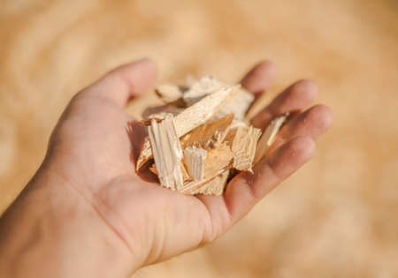 particulate: The pieces of wood in his hand. Selective focus. Stock Photo