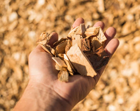 particulate: Technological wood chips for the production of MDF boards. Selective focus.