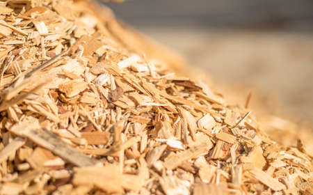 The slope of a pile of industrial wood chips. Selective focus.