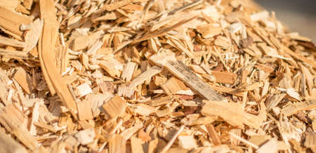 The surface mounds of wood chips. Selective focus.